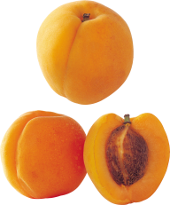 Peach PNG Free Download 21