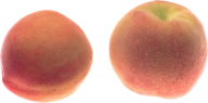 Peach PNG Free Download 22