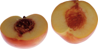 Peach PNG Free Download 23