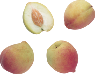 Peach PNG Free Download 29