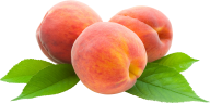 Peach PNG Free Download 30