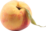 Peach PNG Free Download 32