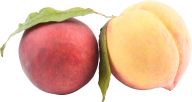 Peach PNG Free Download 34