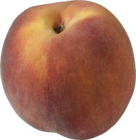 Peach PNG Free Download 40