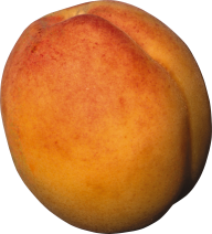 Peach PNG Free Download 5