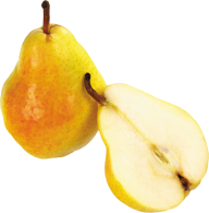 Pear PNG Free Download 1