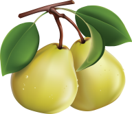 Pear PNG Free Download 11