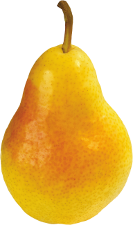 Pear PNG Free Download 13