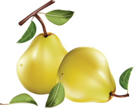 Pear PNG Free Download 16