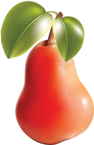 Pear PNG Free Download 23