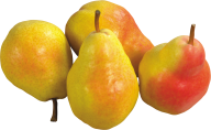 Pear PNG Free Download 25