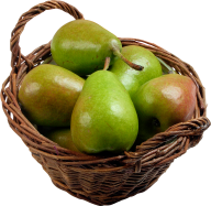 Pear PNG Free Download 26