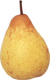 Pear PNG Free Download 28
