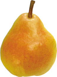 Pear PNG Free Download 29