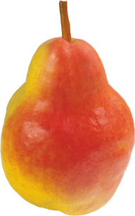 Pear PNG Free Download 5