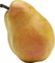 Pear PNG Free Download 6