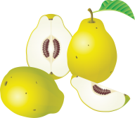 Pear PNG Free Download 9