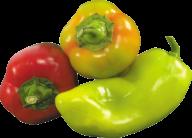 pepper_PNG3227