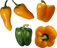 pepper_PNG3229