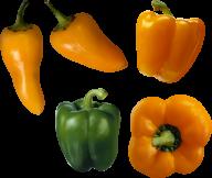 pepper_PNG3229