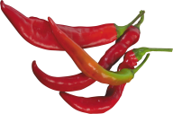 pepper_PNG3235