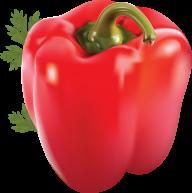 pepper_PNG3245