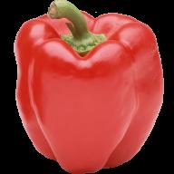 pepper_PNG3261