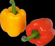 pepper_PNG3263