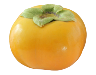 Persimmon PNG Free Download 1