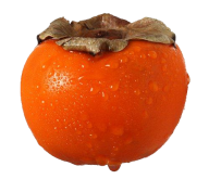 Persimmon PNG Free Download 10