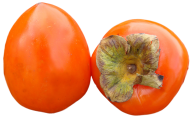 Persimmon PNG Free Download 11