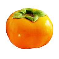 Persimmon PNG Free Download 3