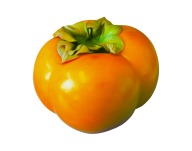Persimmon PNG Free Download 5