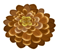 Pine Cone Drawn Image