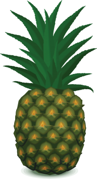 Pineapple PNG Free Download 11