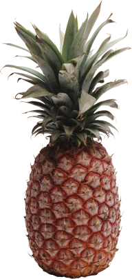 Pineapple PNG Free Download 19