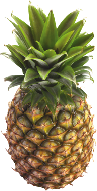 Pineapple PNG Free Download 24