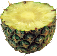 Pineapple PNG Free Download 25