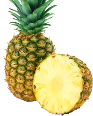 Pineapple PNG Free Download 28