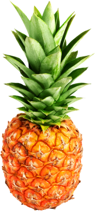Pineapple PNG Free Download 3