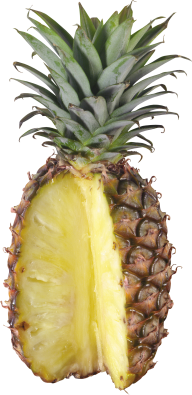 Pineapple PNG Free Download 9