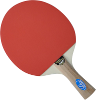 Ping Pong PNG Free Download 13