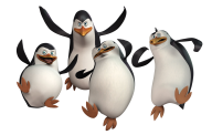 Pinguin PNG Free Download 11