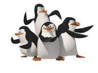 Pinguin PNG Free Download 14