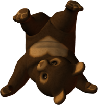Playing Bear Png