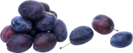 Plum PNG Free Download 11