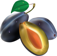 Plum PNG Free Download 13