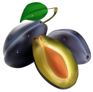 Plum PNG Free Download 17