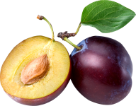 Plum PNG Free Download 19