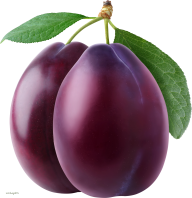 Plum PNG Free Download 2